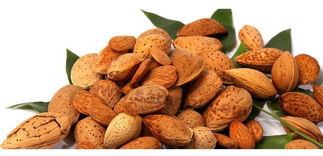 غذایی مفید برای ضعف بدن