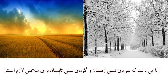 آیا می دانید که سرمای نسبی زمستان و گرمای نسبی تابستان برای سلامتی لازم است!