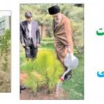 کاشت درخت= نجات زندگی