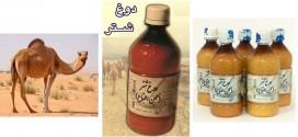 معرفی محصولات و داروها: دوغ شتر (لبن اللقاح)