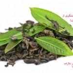 آیا می دانید که چای سبز در پیشگیری از سرطان سینه بیتاثیر است!