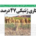 دستكاري ژنتيكي 47 درصد برنجها