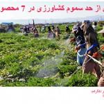 وجود بیش از حد سموم کشاورزی در 7 محصول پر مصرف