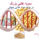 سویا؛ تقلبی بزرگ در تولید مواد غذایی جهانی – بخش دوم