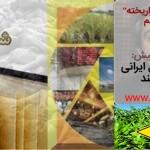 """دکتر ظریف: این """"سلاح"""" نسل ایرانی را عقیم میکند"""