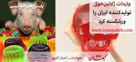 واردات ژلاتینخوکی تولیدکننده ایرانی را ورشکسته کرد