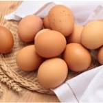 کلسترول تخم مرغ براي سلامت قلب ضرر ندارد