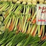 سبزیجات بهاری و این همه فواید