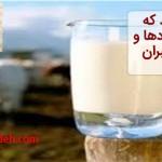 آیا می دانید که شیر دوای دردها و خوراک پیامبران است