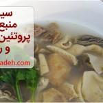 سیرابی منبع غنی از ریز مغذی ها