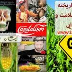محصولات تراریخته چالش حوزه سلامت و امنیت غذایی