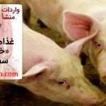 غذاهایی با منشأ «خوک» بر سر سفره ایرانیان