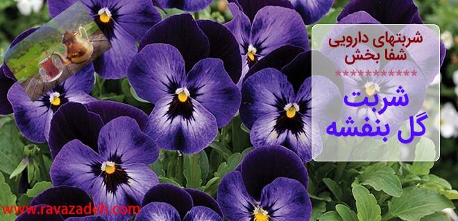 شربتهای دارویی شفا بخش – شربت گل بنفشه