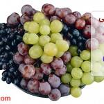 شربت میوه های شیرین