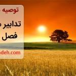 توصیه بهداشتی: تدابیر مربوط به فصل تابستان