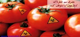 """درخواست محیط زیست از وزارت کشاورزی درباره سلامت """"گوجهفرنگی"""": مصرف سم خطرناک """"دیازینون"""" را متوقف کنید"""