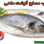 مصلح گوشت ماهی