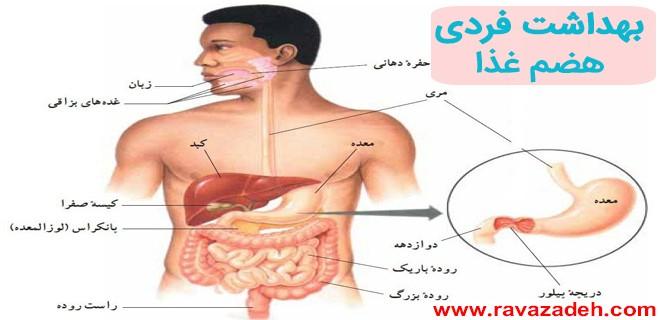 بهداشت فردی- هضم غذا