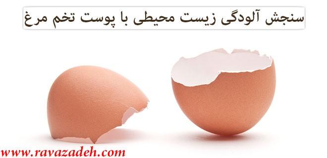 سنجش آلودگی زیست محیطی با پوست تخم مرغ
