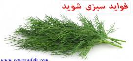 فواید سبزی شوید