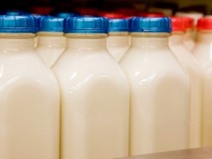 raw-pasteurized-milk-1