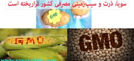 سویا، ذرت و سیبزمینی مصرفی کشور تراریخته است/ رشد بیماریهای اوتیسم، آلزایمر و دیابت بعد از آزادشدن مصرف تراریختهها