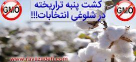 یک خیانت دیگر به سلامت و کشاورزی ایران در شلوغی انتخابات