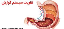 سلامت سیستم گوارش