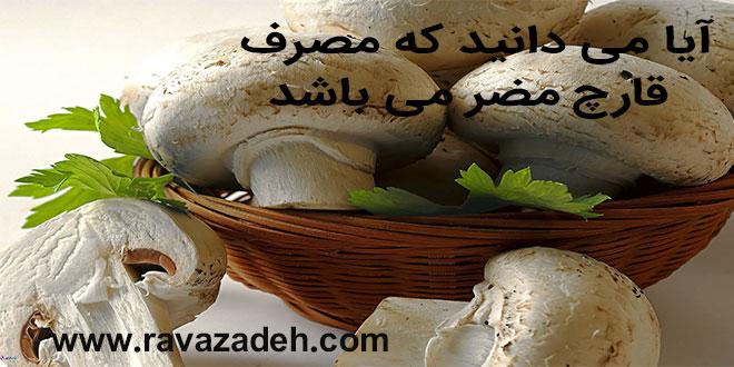 آیا می دانید که مصرف قارچ مضر می باشد