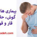 بيماری های داخلی، گوش، حلق و بينی: قار و قور شکم
