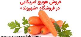 اگر هویج آمریکایی نبود چرا از فروشگاه شهروند جمعآوری شد؟!