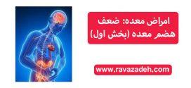 امراض معده: ضعف هضم معده (بخش اول)