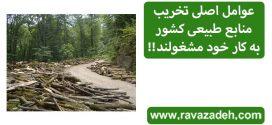 عوامل اصلی تخریب منابع طبیعی کشور به کار خود مشغولند!!