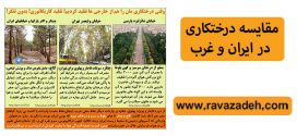 مقایسه درختکاری در ایران و غرب