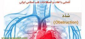 آشنایی با لغات و اصطلاحات طب اسلامی ایرانی: سُدَد (Obstruction)