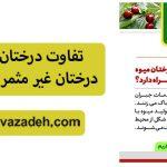 تفاوت درختان میوه با درختان غیر مثمر (مطلب 2)