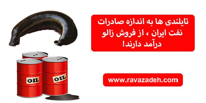 تایلندی ها به اندازه صادرات نفت ایران، از فروش زالو درآمد دارند!