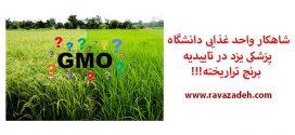 شاهکار واحد غذایی دانشگاه پزشکی یزد در تاییدیه برنج تراریخته!!!
