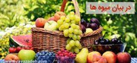 در بیان میوه ها