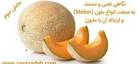 نگاهی علمی و مستند به صنعت انواع ملون (Melon) و ارتباط آن با ملیون – بخش سوم