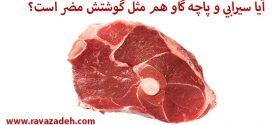 آیا سیرابی و پاچه گاو هم مثل گوشتش مضر است؟