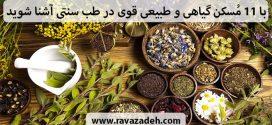 با ۱۱ مُسکن گیاهی و طبیعی قوی در طب اسلامی ایرانی آشنا شوید