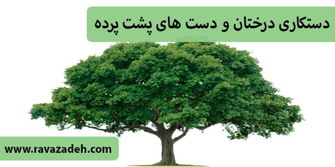 کلیپ تصویری سخنرانی حکیم دکتر روازاده: دستکاری درختان و دست های پشت پرده