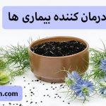 سیاهدانه؛ درمان کننده بیماری ها