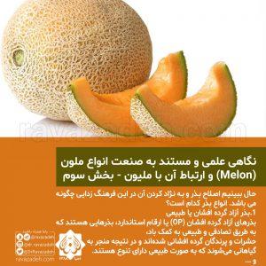 نگاهی علمی و مستند به صنعت انواع ملون (Melon) و ارتباط آن با ملیون - بخش سوم