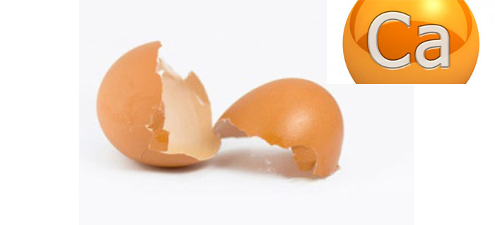 Photo of تهیه کلسیم خانگی با استفاده از پوست تخم مرغ