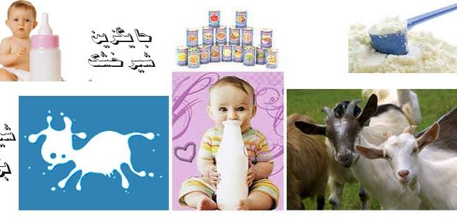 آیا می دانید که جایگزین شیر خشک چه بوده است؟