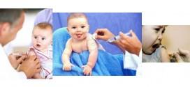 واکسیناسیون و عدم تفاوت در میزان مرگ و میر