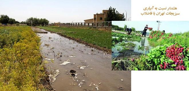هشدار نسبت به آبیاری سبزیجات تهران با فاضلاب/لاپوشانیهای سلامت زیاد است