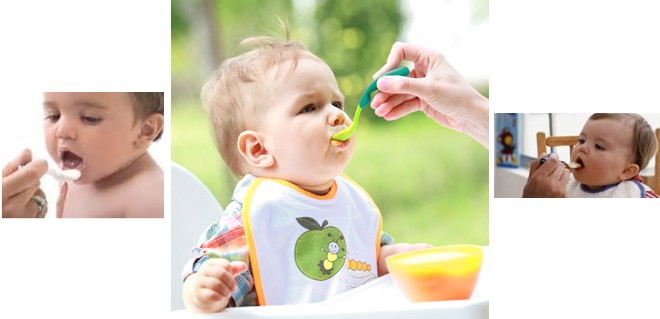 کاهش آلرژی غذایی با شروع غذای مکمل در ۴ تا ۶ ماهگی
